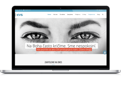 Responsive modern sites and graphic works for the Non-profit organisation – EVS