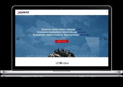 Tvorba slovenskej jazykovej mutácie webstránky pre pobočku medzinárodnej konzultačnej spoločnosti